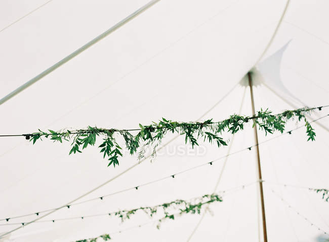 Light garlands with floral decoration — Stock Photo