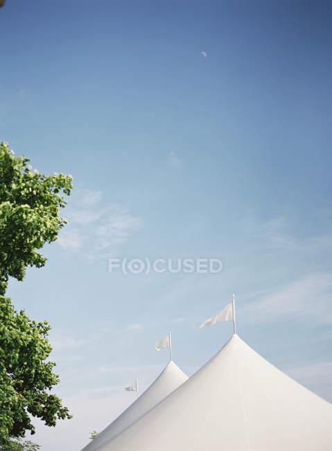 Pavillon Zelte neben Bäumen — Stockfoto