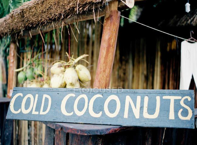 Signo de coco y cocos colgando de las cuerdas - foto de stock