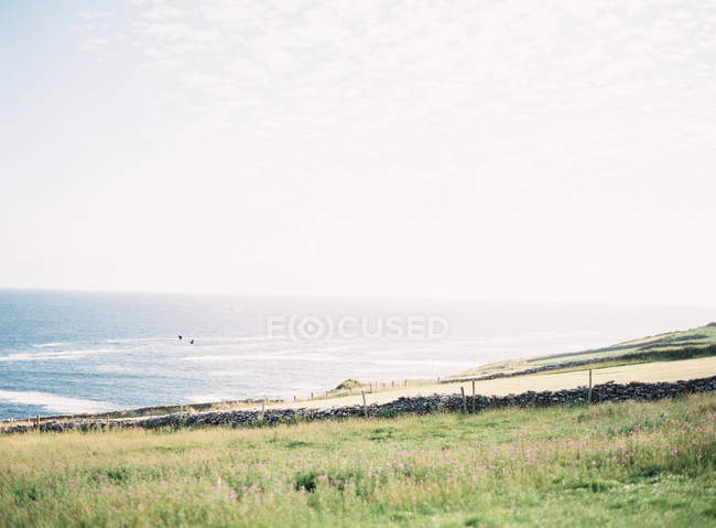 Island shore with ocean on background — Stock Photo