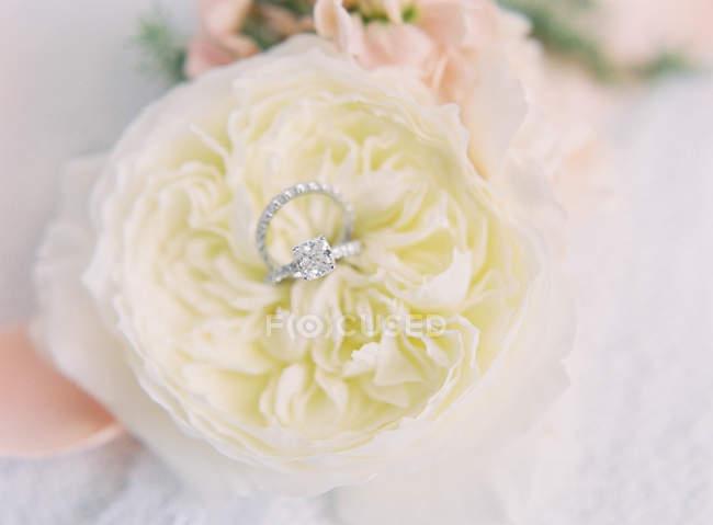 Обручальные кольца на декоративном цветке — стоковое фото
