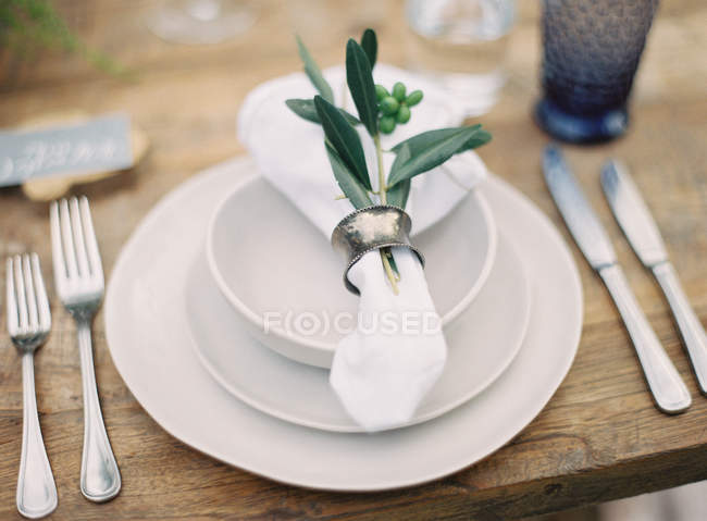 Napkin decorated with plants — Stock Photo
