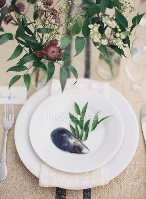 Piatto decorato con conchiglia cozza — Foto stock
