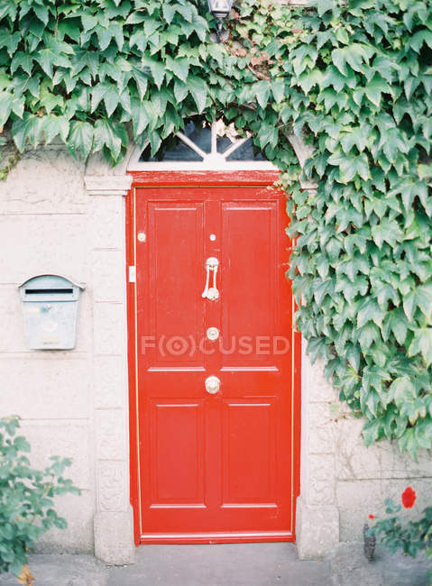 Red vintage door — Stock Photo