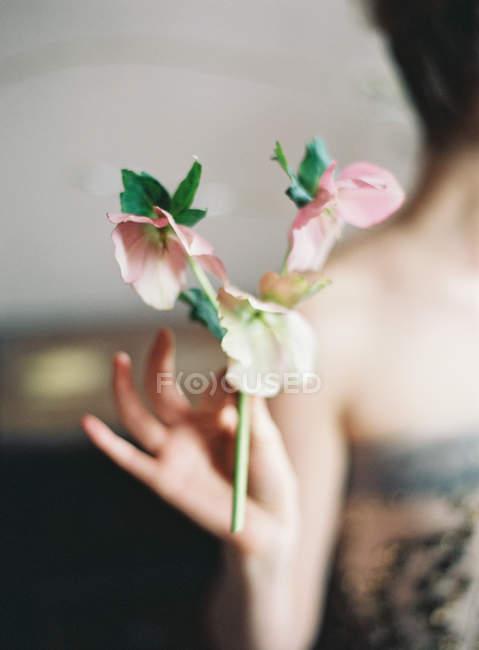 Woman holding cut flowers — Stock Photo