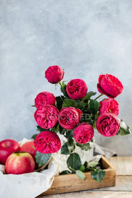 Frescas rosas en florero - foto de stock