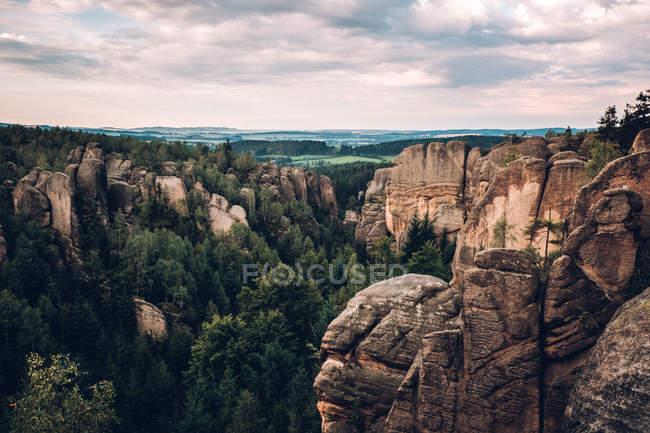 Avec la forêt de pins des montagnes Rocheuses — Photo de stock