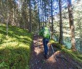 Уокер з лісовими стежками гору, збирається Schladming Tauern, Schladming, Штирія, Австрія, Європі — стокове фото