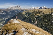 Climber on summit of Cima Dodici — Stock Photo