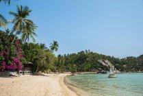 Sandy beach and turquoise sea, Koh Tao, Gulf of Thailand, Thailand, Asia — Stock Photo