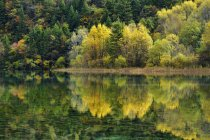 Five Flower Lake in autumnal Jiuzhaigou National Park, Sichuan Province, China. — Stock Photo