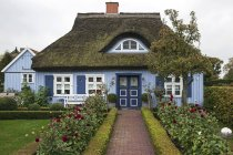 Typical blue thatched-roof house in Born am Darss, Mecklenburg-Western Pomerania, Germany — Stock Photo