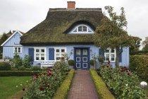 Casa típica de azul com teto de palha em Born estou Darss, Mecklenburg-Western Pomerania, Alemanha — Fotografia de Stock