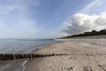 Groynes at Baltic Sea beach near Zingst in Mecklenburg-Western Pomerania, Germany — Stock Photo