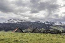 Ферми перед Пілат гірського ланцюга, Люцерн, Швейцарія, Європа — стокове фото