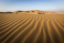 Structures and patterns of shadow on sand dunes in Empty Quarter of United Arab Emirates, Asia — Stock Photo