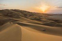 Песчаные дюны на закате в Руб аль Хали пустыне Объединенных Арабских Эмиратов, Азия — стоковое фото