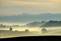 Осінній Туманний атмосферу в Європі кантоні Цюрих, Швейцарія, Швейцарське плато, Hirzel, — стокове фото