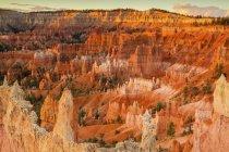 Rock hoodoos in Amphitheater, Bryce Canyon National Park, Utah, USA, North America — Stock Photo