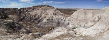 Скалы окрашенные пустыни, окаменелого леса национального парка, Аризона, США — стоковое фото