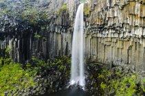 Svartifoss waterfall with basalt columns, Skaftafell National Park, Iceland, Europe — Stock Photo
