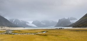 Scenic view of meadow at Magdalenefjorden fjord of Spitsbergen, Svalbard Islands, Norway, Europe — Stock Photo