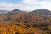 Foresta del Palatinato nel fogliame autunnale, Annweiler, Palatinato, Renania-Palatinato, Germania, Europa — Foto stock