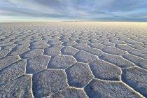 Сотовые структуры Салар де Уюни соли плоский на рассвете в Альтиплано, Lipez, Боливия, Южная Америка — стоковое фото