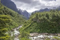 Glacial river in front of hanging glacier, Queulat National Park, Aysen Province, Chile, South America — Stock Photo
