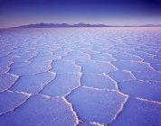 Соты структура соляной коркой соли Салар де Уюни плоский на восход, Альтиплано, Боливия, Южная Америка — стоковое фото