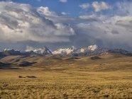 Cordigliera Real catena montuosa all'altopiano di tramonto, boliviano Altiplano, La Paz, Bolivia, Sud America — Foto stock