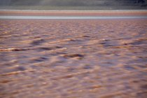 Laguna Colorada with red water caused by algae in Uyuni, Lipez, Bolivia, South America — стоковое фото