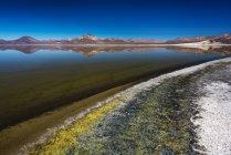 Солт-Лейк Салар де Суріре у місті Putre, провінція Парінакота, Аріка y Парінакота, Чилі, Південна Америка — стокове фото