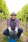 Winemaker holding harvested grapes in vineyard — Stock Photo