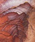 Пісковик червоний формування на Петра, Йорданія, Азії — стокове фото