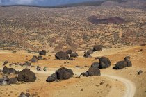 Lava balls at footpath to Teide National Park, Tenerife, Canary Islands, Spain, Europe — Stock Photo