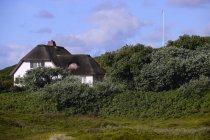 Maison de chaumière en chaume typique à Hornum, Sylt, îles frisonnes du Nord, Frisia du Nord, Schleswig-Holstein, Allemagne, Europe — Photo de stock