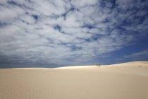Sanddünen unter blauem Himmel mit Wolken, wandernde Dünen von El Jable, Las Dunas de Corralejo, Naturpark Corralejo, Fuerteventura, Kanarische Inseln, Spanien, Europa — Stockfoto