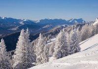 Зимний пейзаж Браунека, Цугспитце, Ленгри, Изарвинкеля, Верхней Баварии, Баварии, Германии, Европы — стоковое фото