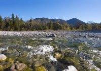 Річка хісар тече в Леже, Lenggries, Isarwinkel, Верхня Баварія, Баварія, Німеччина, Європа — стокове фото