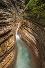 Cenário do desfiladeiro de Tauglbach com córrego da água, Tauglbachklamm, distrito de Hallein, Salzburg, Áustria, Europa — Fotografia de Stock
