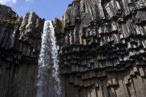 Basalt columns of Svartifoss waterfall, Skaftafell National Park, Iceland, Europe — Stock Photo