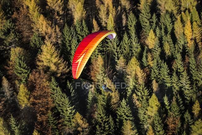 Parapente, sobrevoando a floresta de outono — Fotografia de Stock