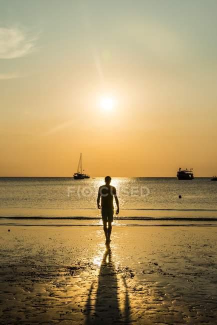 Vista posterior de la silueta del hombre en la playa al atardecer, Córcega, Francia - foto de stock