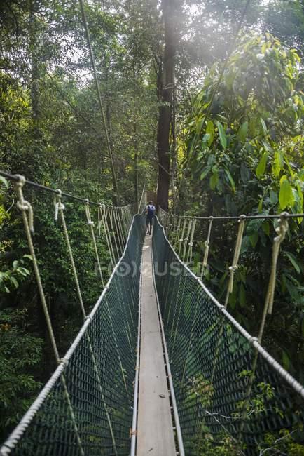 Male tourist on suspension bridge — Stock Photo