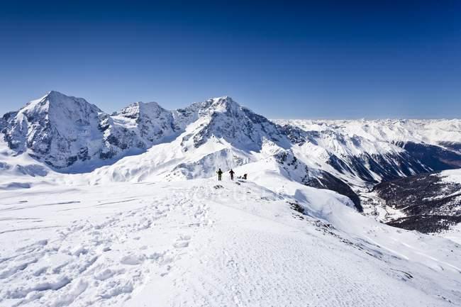 Лыжники, спуск Hintere Schoentaufspitze — стоковое фото