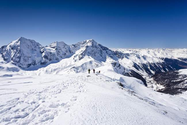 Esquiadores cross-country decrescente Hintere Schoentaufspitze — Fotografia de Stock