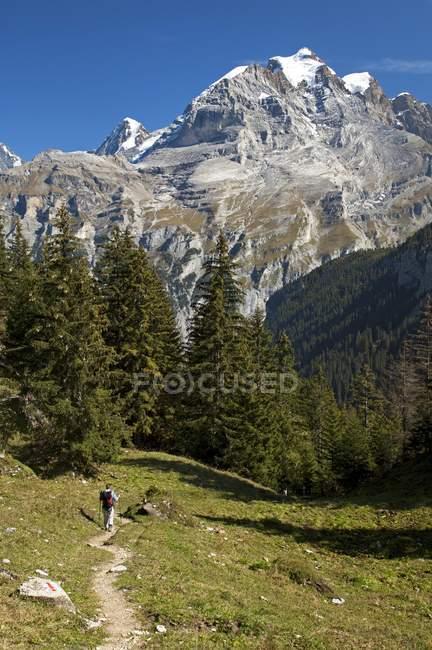 Wanderer auf einen Weg, den Gipfel des Mt Jungfrau — Stockfoto