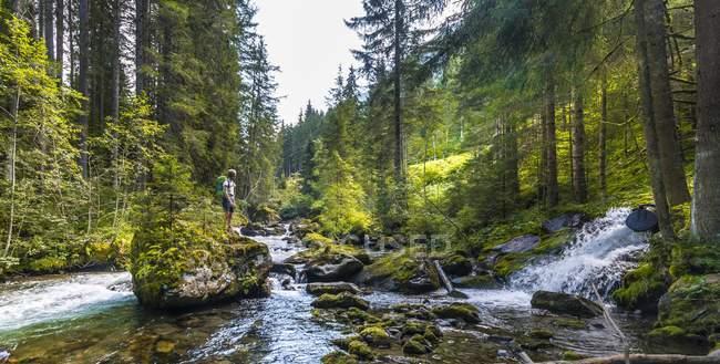 Caminante sobre una roca en el río - foto de stock