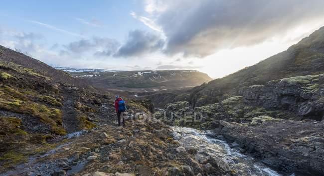 Mujer joven en camino de senderismo - foto de stock